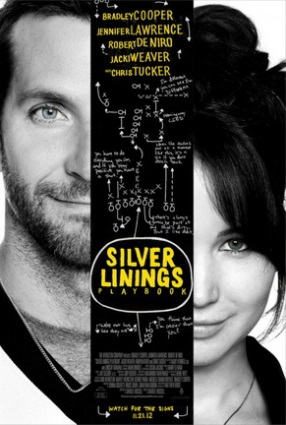 11-25-2012TheSilverLiningsPlaybook